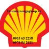 Dau-mo-nhon-shell-2